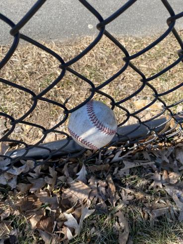 Photograph of a baseball stuck in the bottom of a chainlink fence