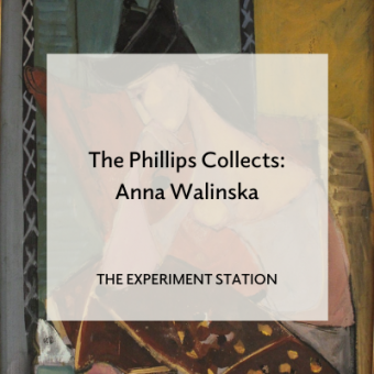 Promo for blog post The Phillips Collects: Anna Walinska