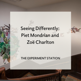 Blog promo for Seeing Differently: Piet Mondrian and Zoe Charlton