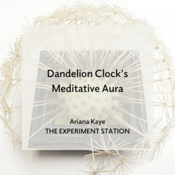 Promo for Dandelion Clock's Meditative Aura blog